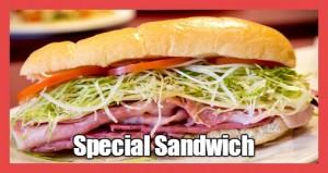 SpecialSandwich